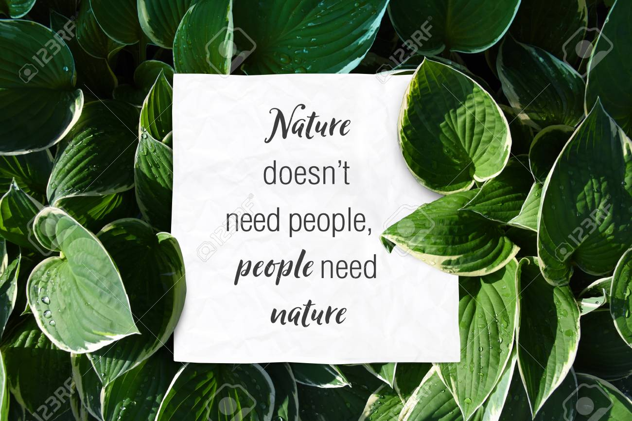 text quote nature doesnt need people but people need nature save