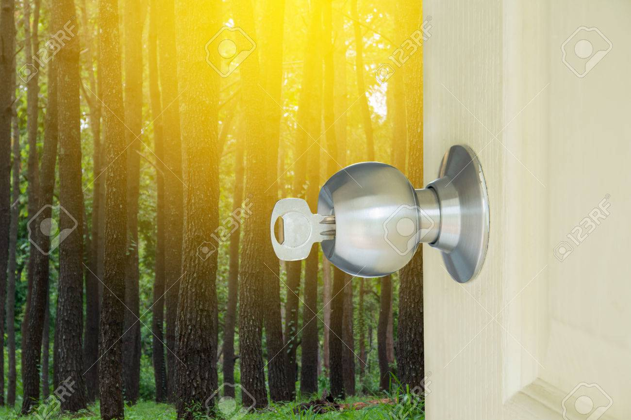 open locked door with key in key hole to nature forest and