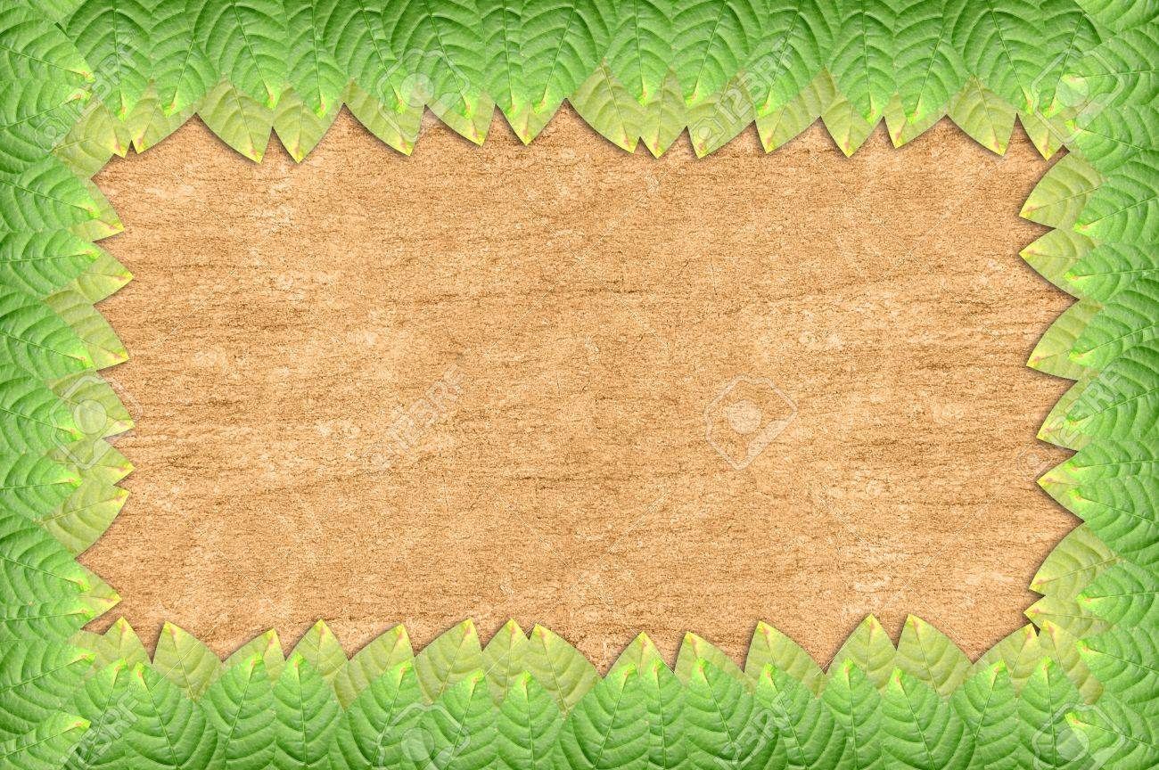 Green Leaves Frame On Wooden Wall Stock Photo, Picture And Royalty ...