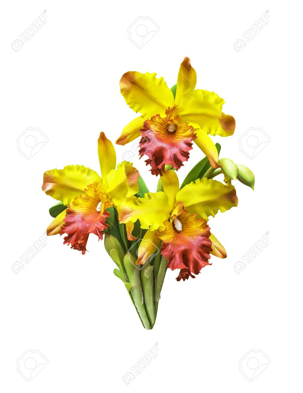 Artificial bouquet orchid flower isolated on white with clipping artificial bouquet orchid flower isolated on white with clipping path stock photo 74010326 izmirmasajfo