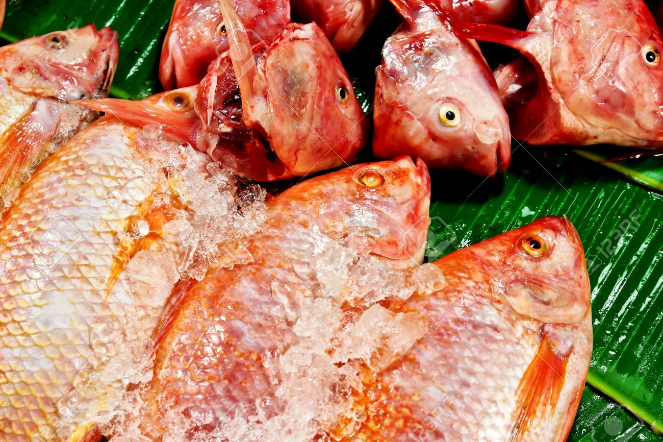 Fresh red fish in the market Stock Photo - 18991620