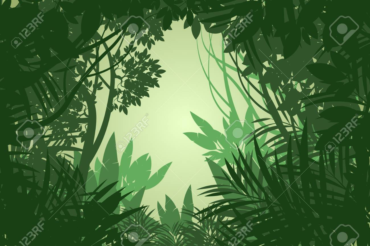 Beautiful View Rain Forest Scene Vector Wallpaper Nature Backgrounds