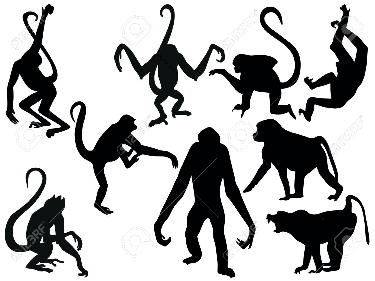 Monkey Clipart Vector Monkeys Vector
