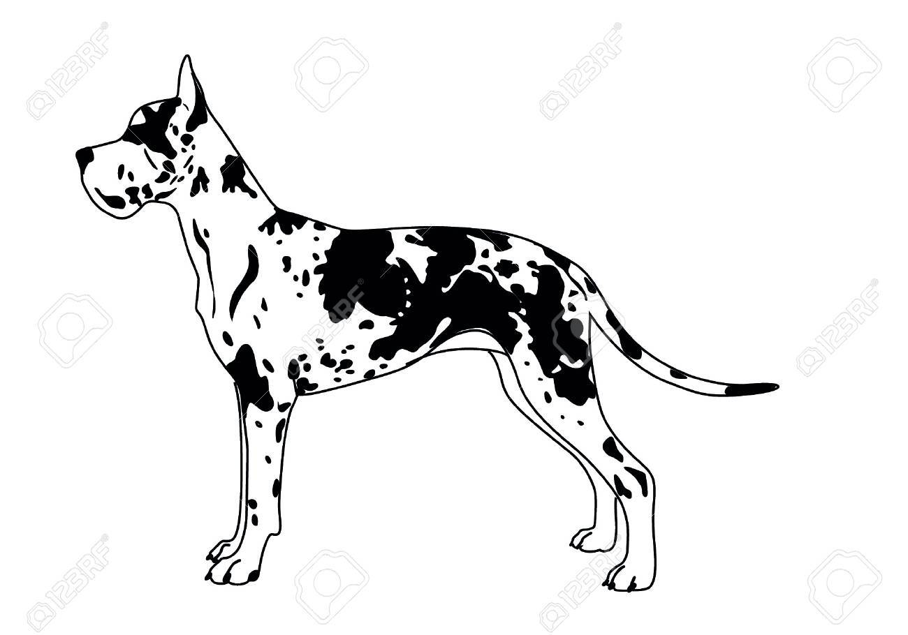 Dog Stock Vector - 19917894