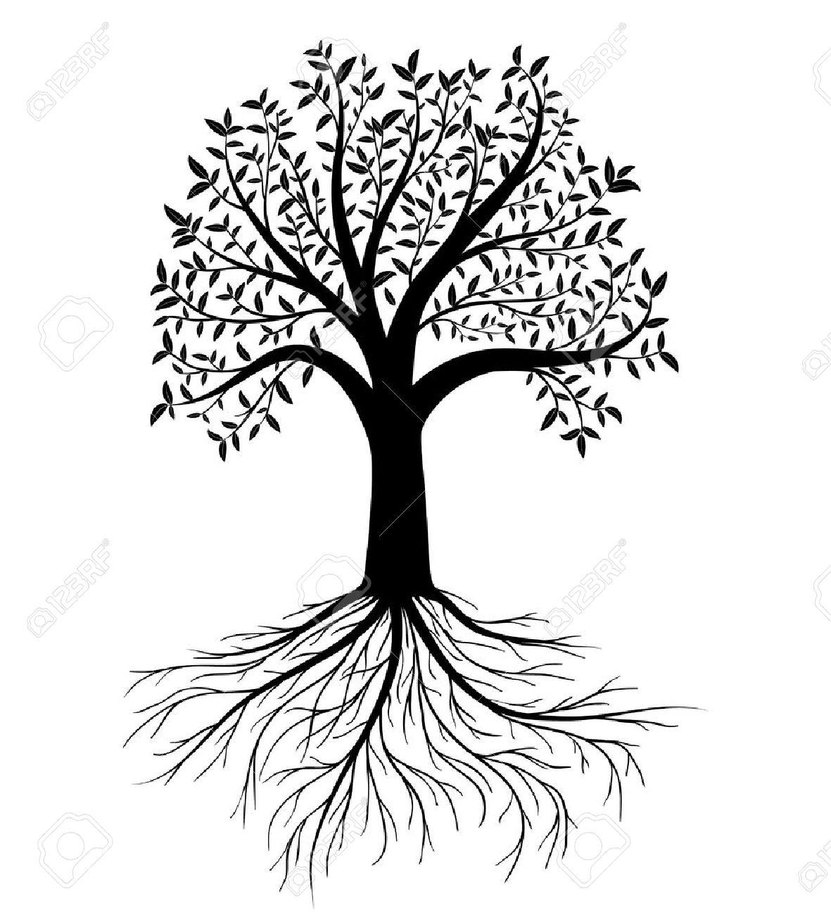 silueta de árbol con hojas y raíces ilustraciones vectoriales clip