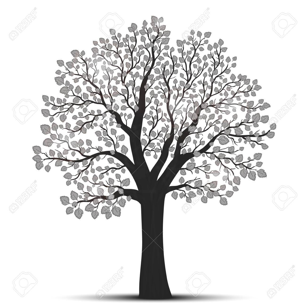 Tree silhouette with leaves - 51358095