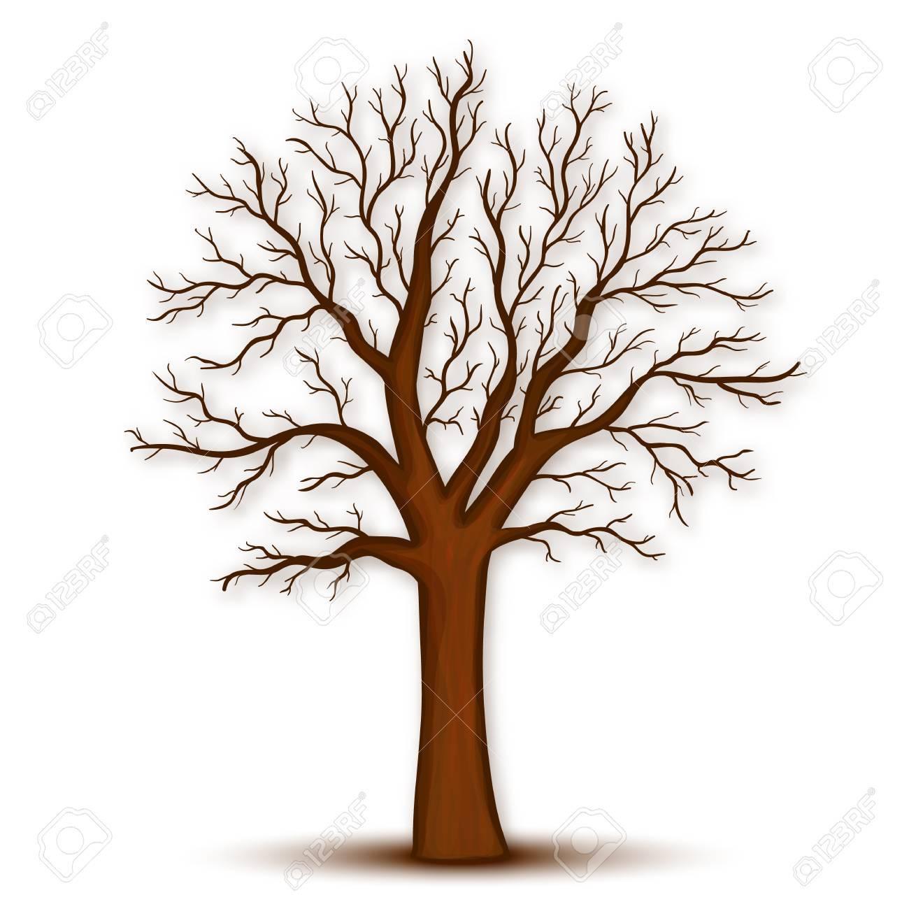 Ausmalbild Kahler Baum Ausmalbilder Kostenlos Zum Ausdrucken