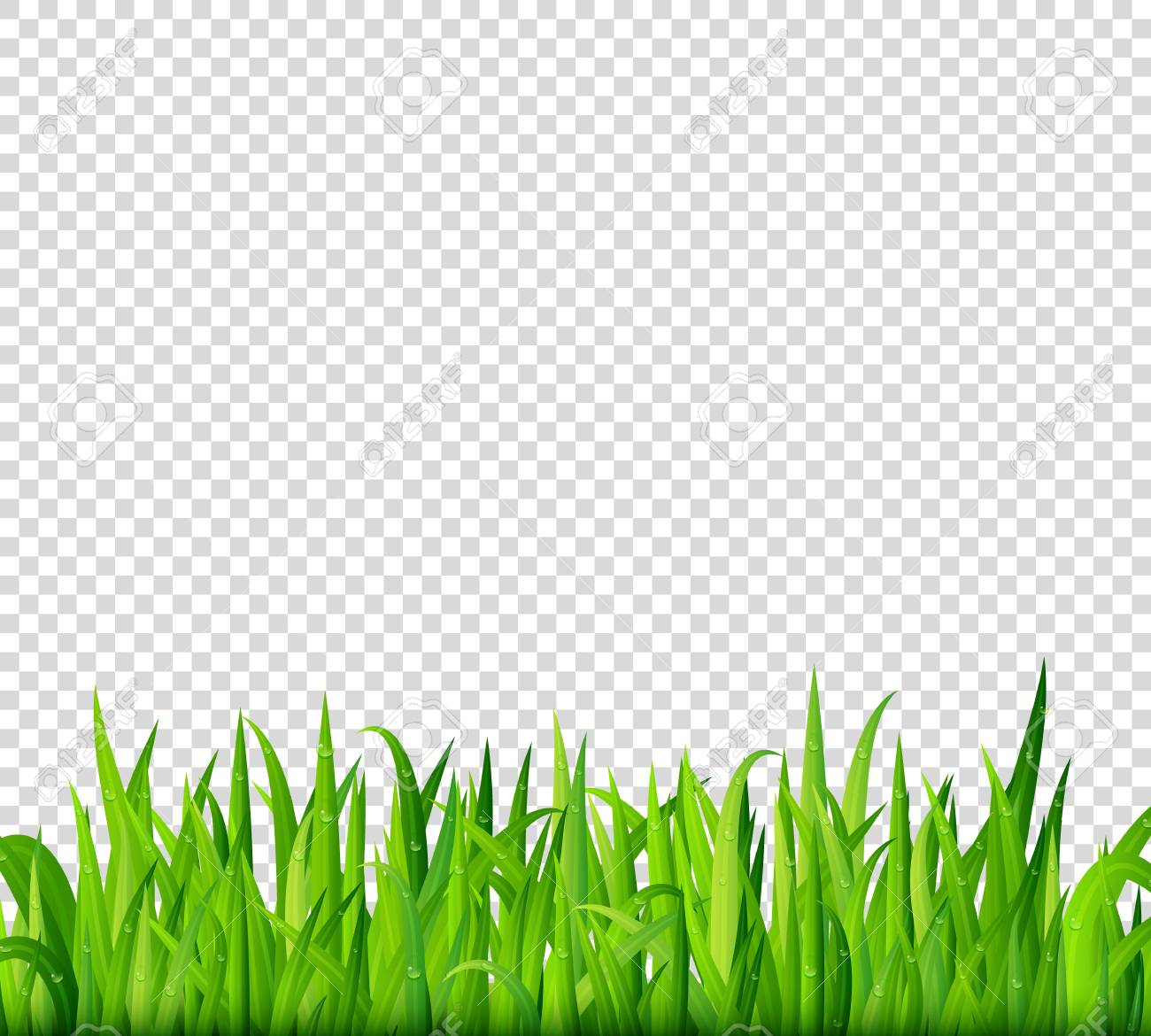 grass border no background clipart green grass border on transparent background vector stock vector 68809653 grass border on transparent background royalty free
