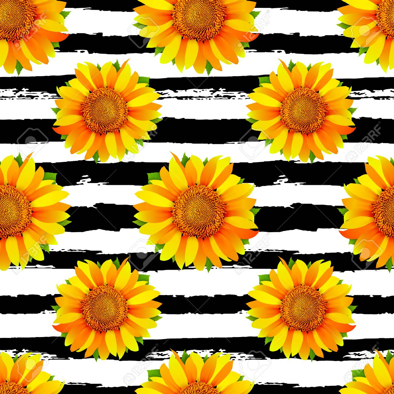 113564647 seamless pattern with sunflowers on black and white stripes background vector