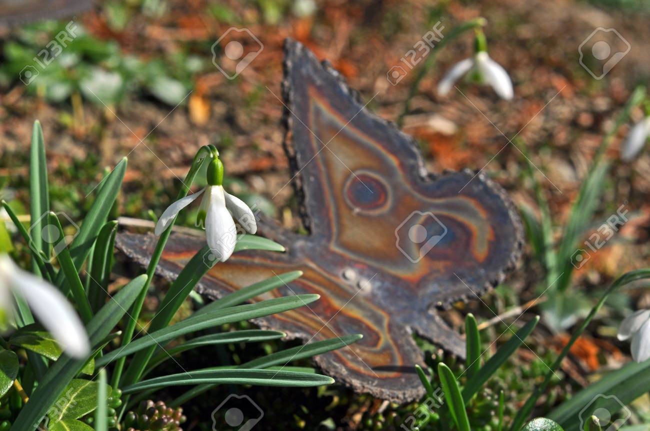 Signs of Spring Stock Photo - 12552167