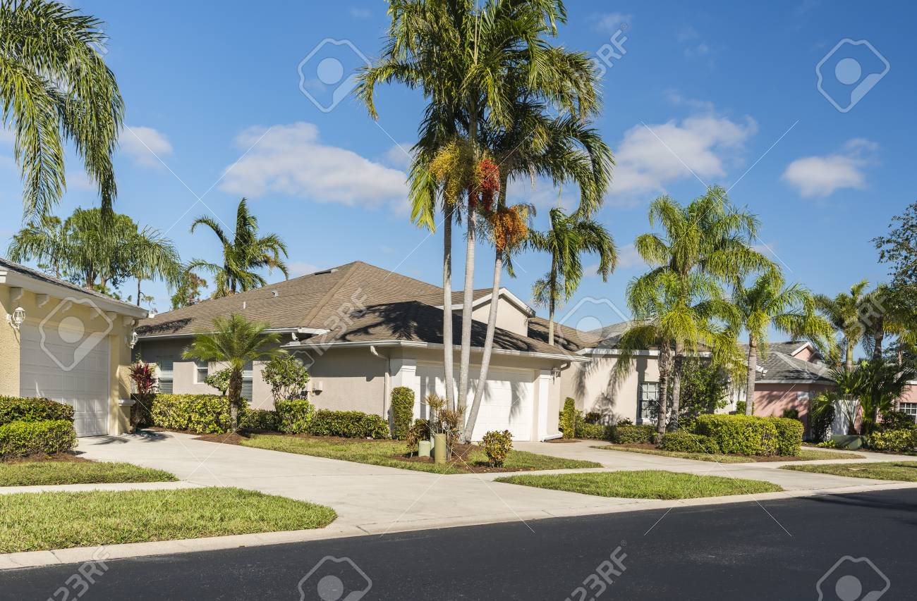 Typical houses with palms in subdivision, South Florida