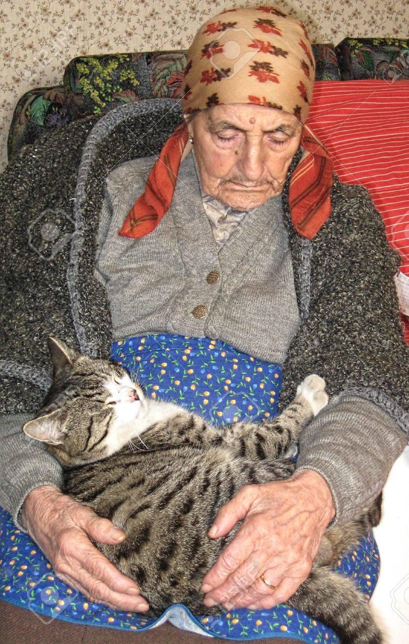 """Résultat de recherche d'images pour """"vivre ensemble chats"""""""