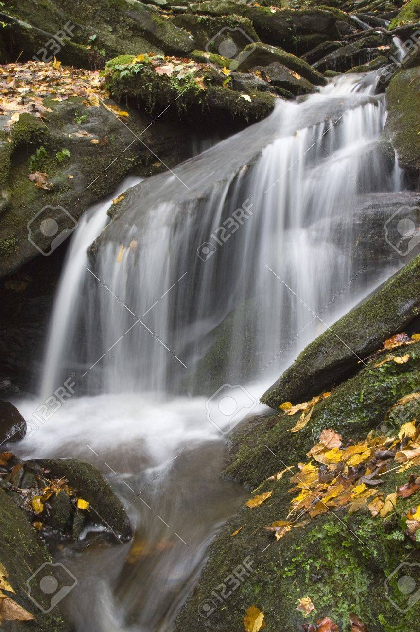 A small stream waterfall with moss covered rocks and fall foliage Stock Photo - 17034373
