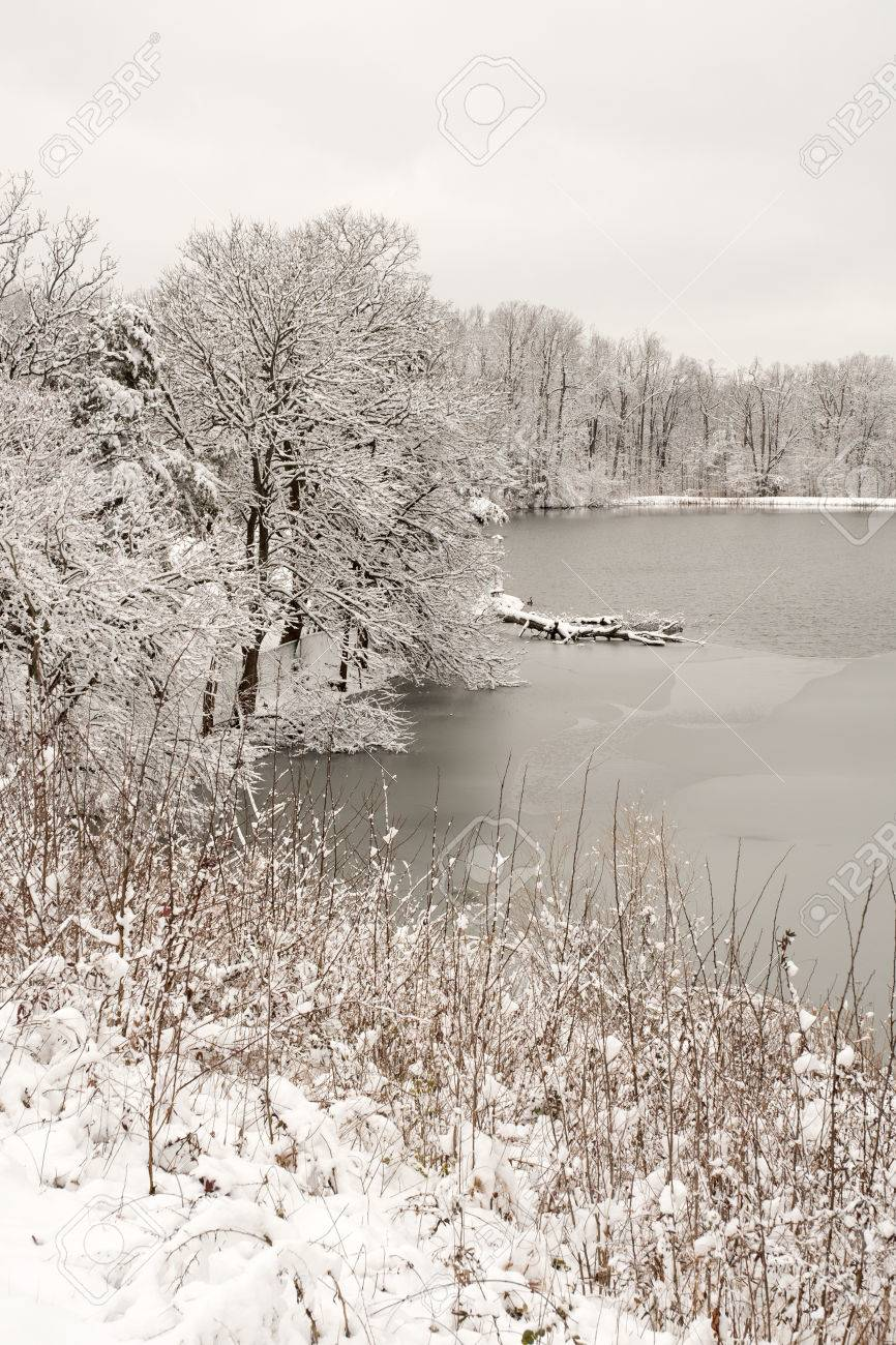 Pond and surrounding trees in fresh snow Stock Photo - 40559803