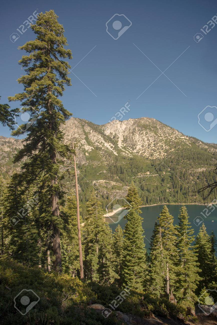 Lake Tahoe through trees with mountain in background Stock Photo - 74449300