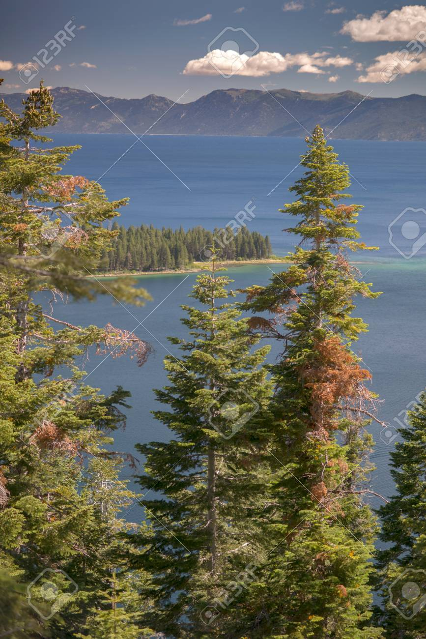 Lake Tahoe through trees with mountains in background Stock Photo - 74449340