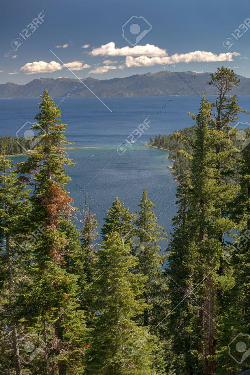 Lake Tahoe through trees with mountains in background Stock Photo - 74449363