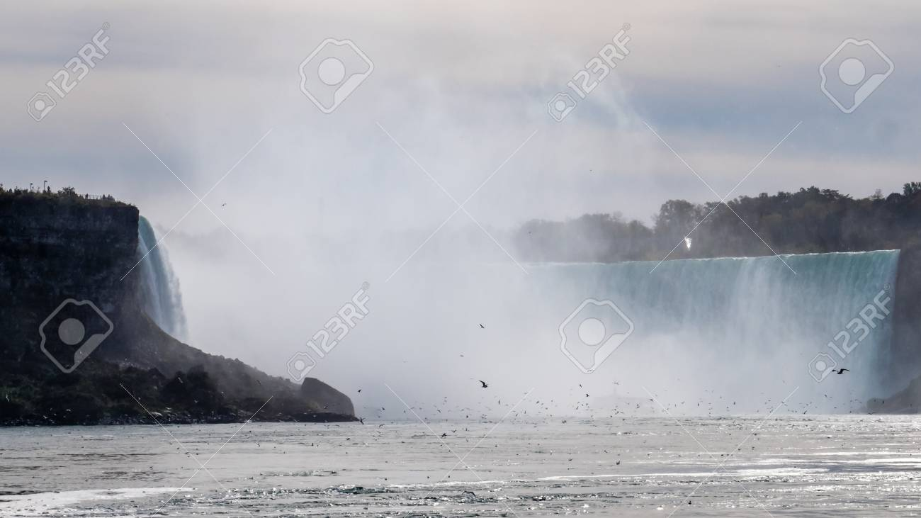 niagra falls seen from a boat with thousands of birds infront canadian side - 108906190