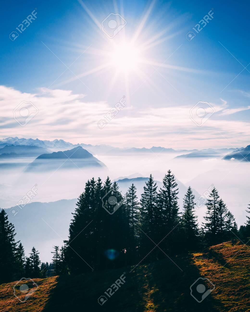 aerial Point of interest shot of pine tree with beautiful mountain scenery covered in fog with lake swiss alps rigi, sun shining directly in camera vertical - 131919697