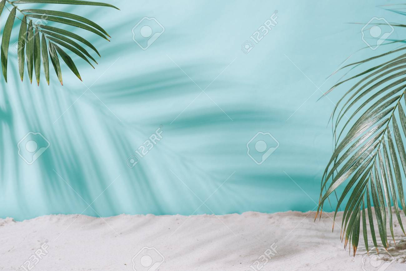 Summer concept. Palm tree shadow on a blue background. - 100063266