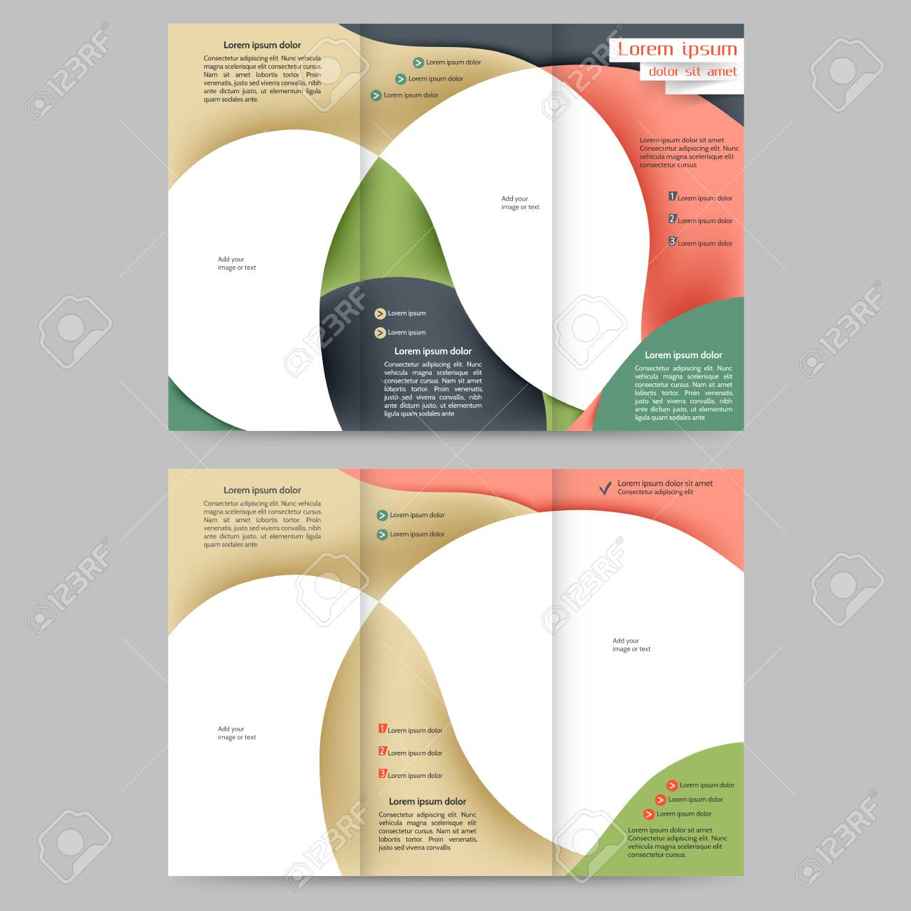 color tri fold business brochure design template with abstract lines and waves for your business stock - 3 Fold Brochure Design Templates