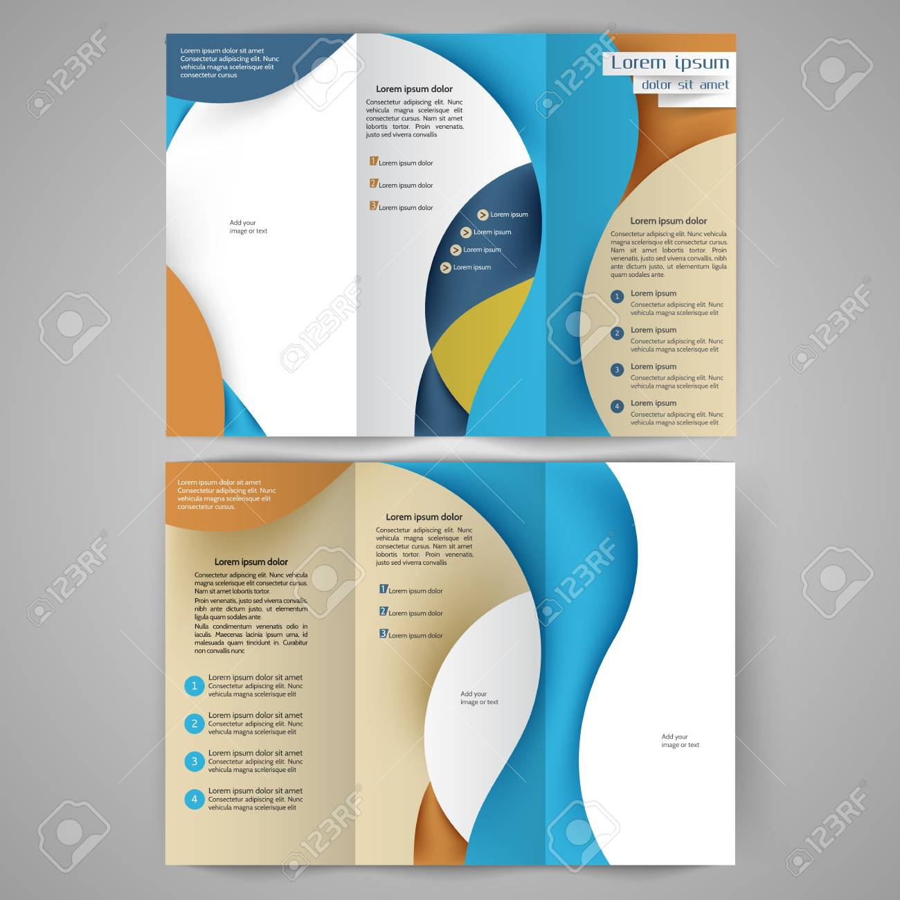 color tri fold business brochure design with abstract lines and