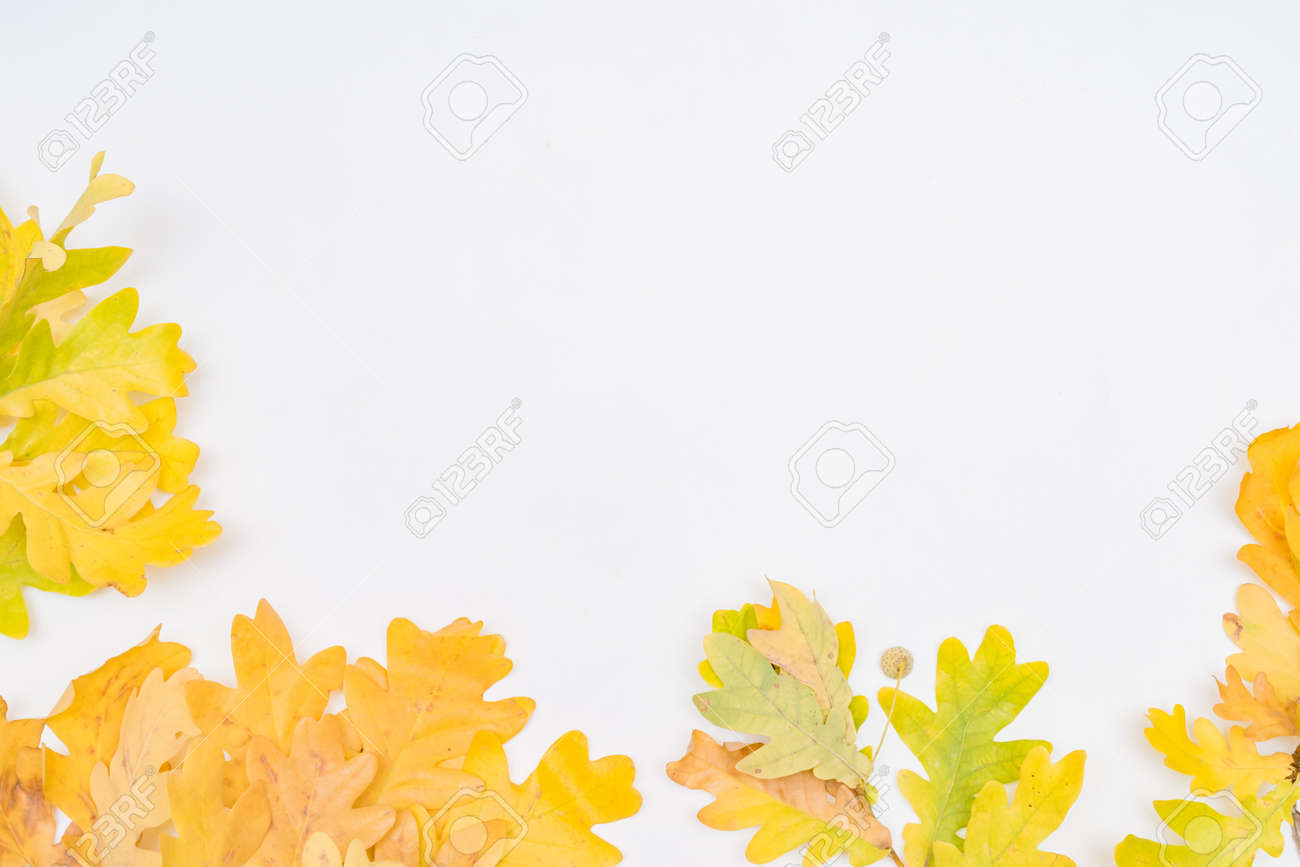Flat lay composition with colorful autumn leaves on a white background - 154858191