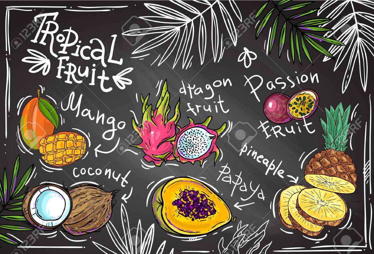 Beautiful hand drawn tropical fruits for your design - 52129909