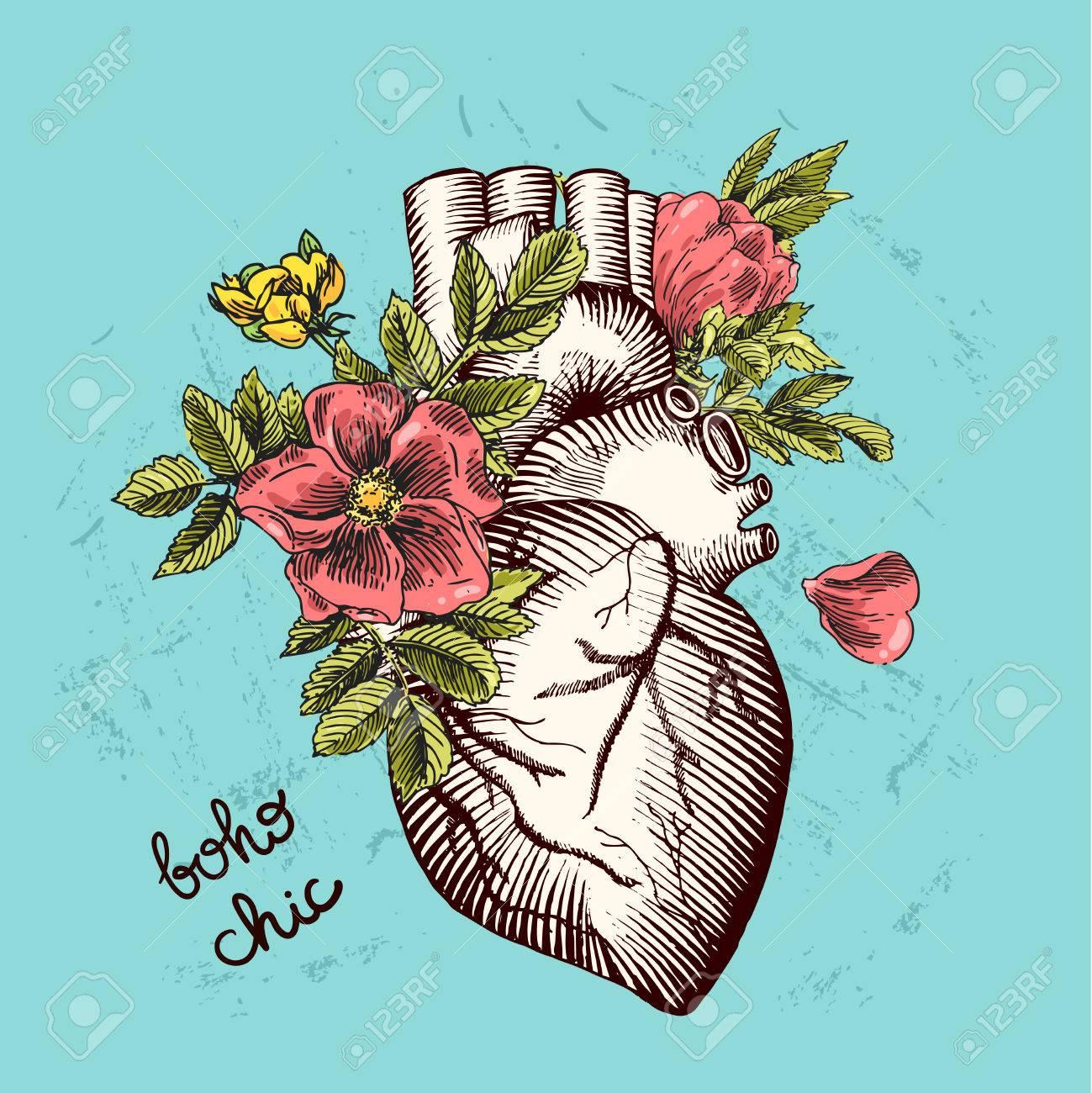 Tarjetas De San Valentín. Corazón Anatómico Con Flores. Vector ...