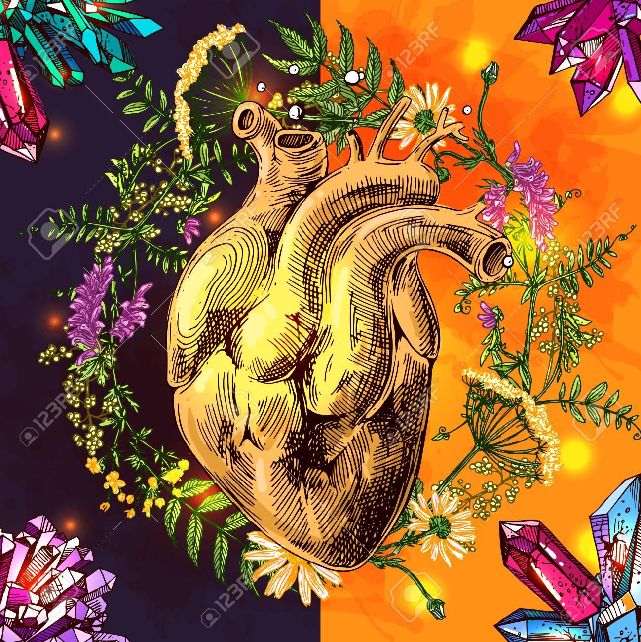 Illustration Avec Croquis De Coeur Humain Fond De Vecteur Dessiné Main Avec Fleurs Sauvages Et Cristallin Dessin De Style Boho Nous Pour Imprimer