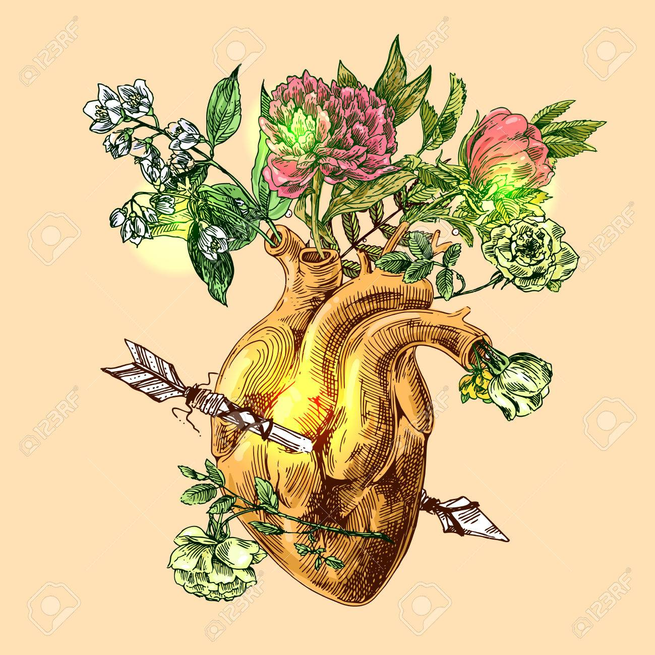 3bbb17db9 Illustration with sketch of human heart and flowers. Hand drawn vector  background.Boho style