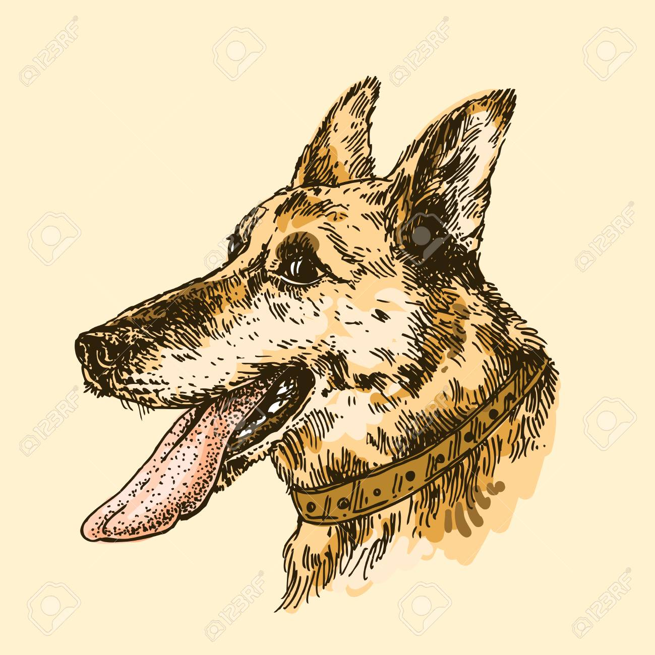 chien dillustration vectorielle dessins la main avec la langue dessin de style croquis symbole de la nouvelle anne 2018 nous pour des invitations - Langue Dessin