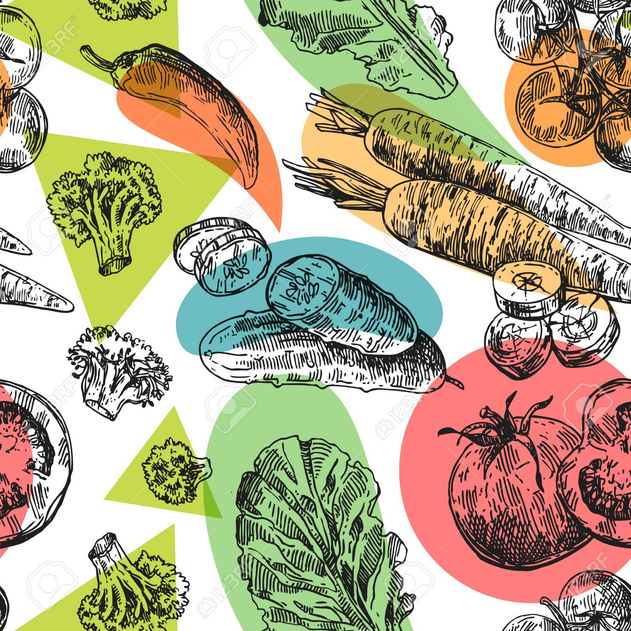 Beautiful hand drawn illustration vegetable. Stock Vector - 92641085