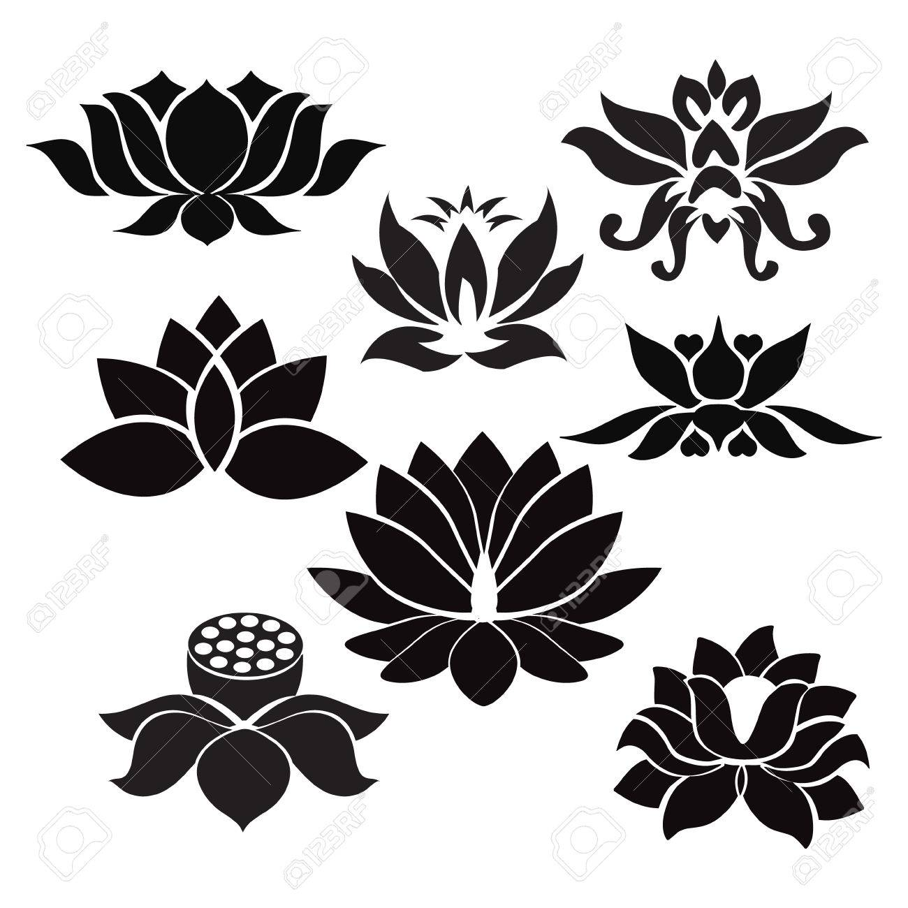 Vector lotus flowers silhouettes set of eight vector illustrations vector vector lotus flowers silhouettes set of eight vector illustrations illustration on white background izmirmasajfo