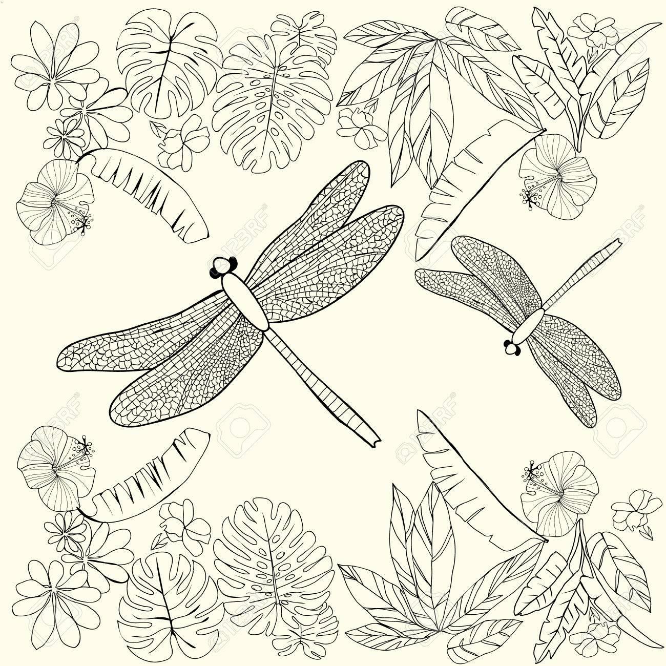 Hand Gezeichnet Tropische Blumen, Blätter Und Libellen. Malbuch Für ...