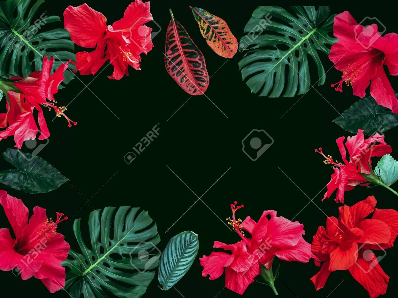Fondo Romántico Para El Marco De La Naturaleza Con Flores Y Hojas ...