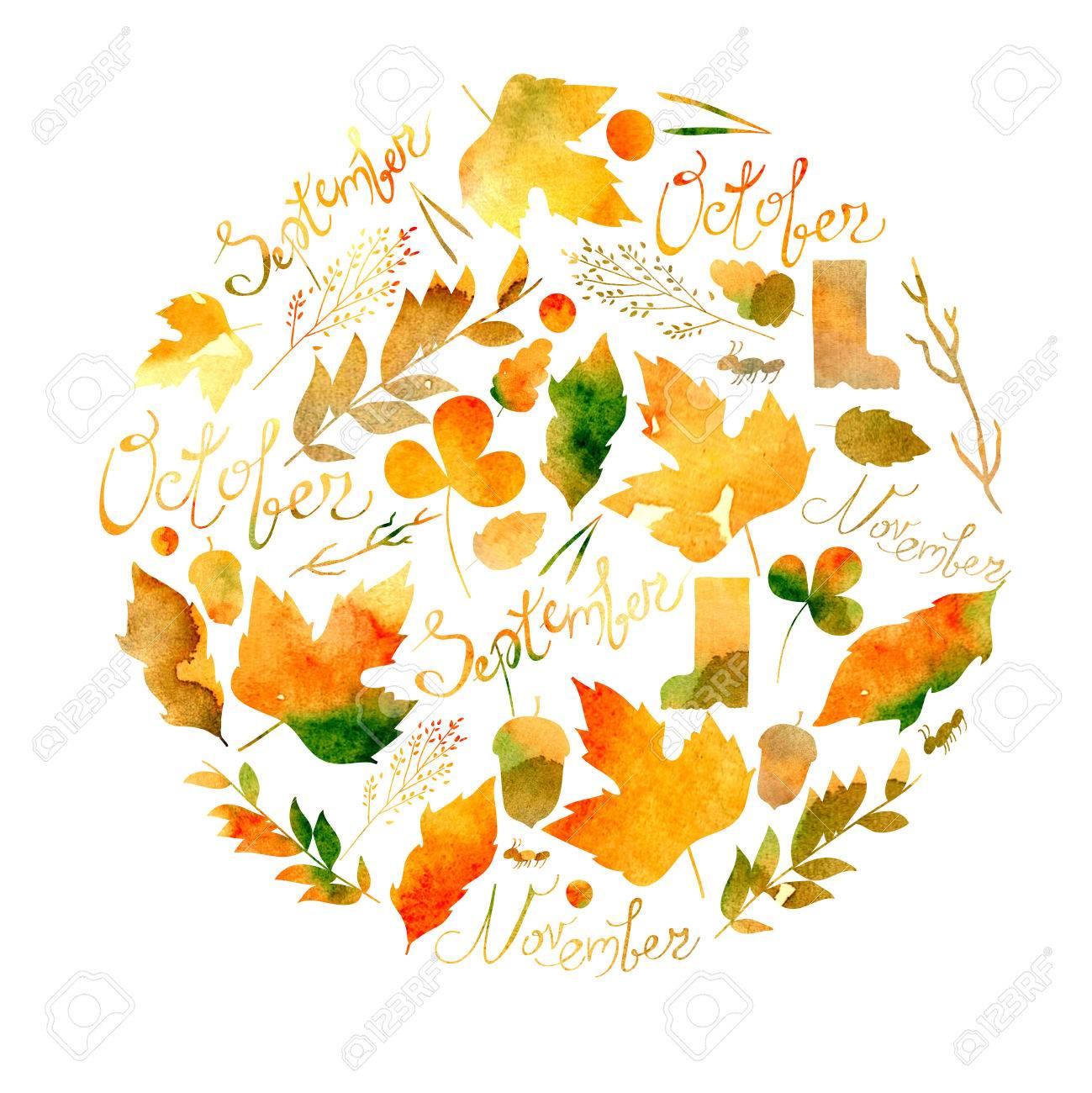 イラストを描いた一連の葉小枝果実花秋要素9 月10 月11 月