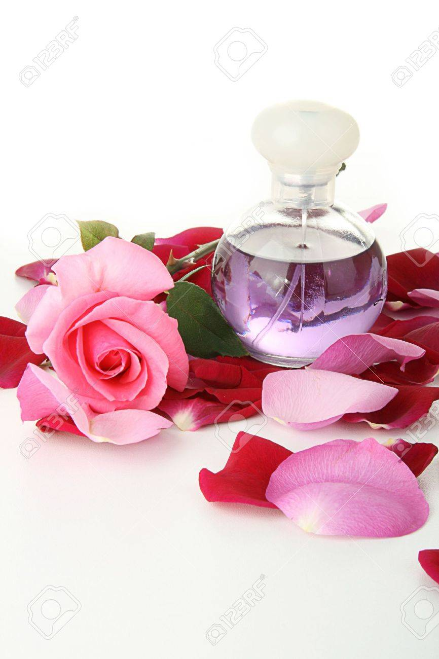 investigatory project on rose petal perfume Zara rose petal zara for women it doesn't project much and it lasts a few hours you can expand it by adding a personal perfume review.