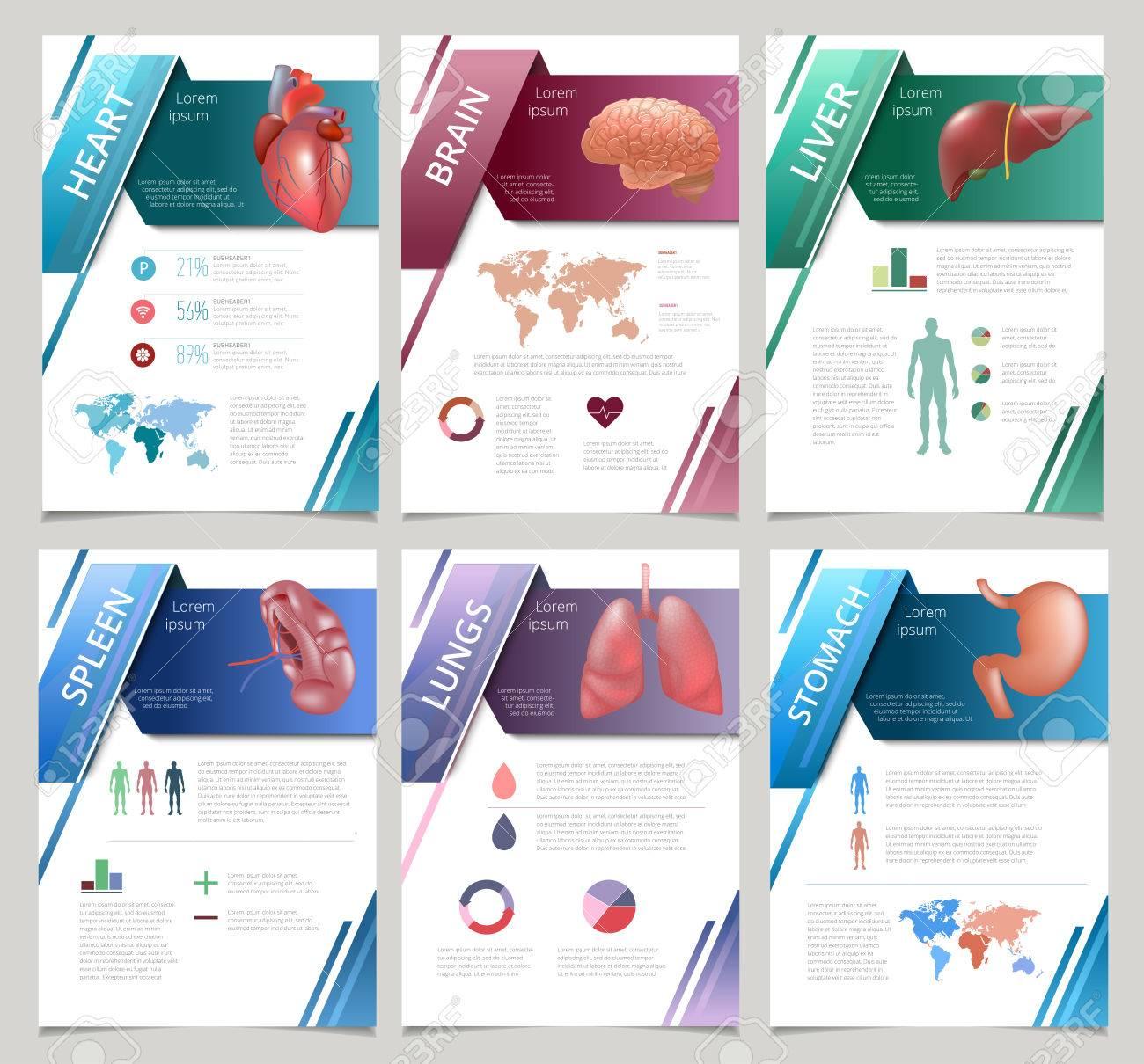 internal human organs infographics set set of medicine poster