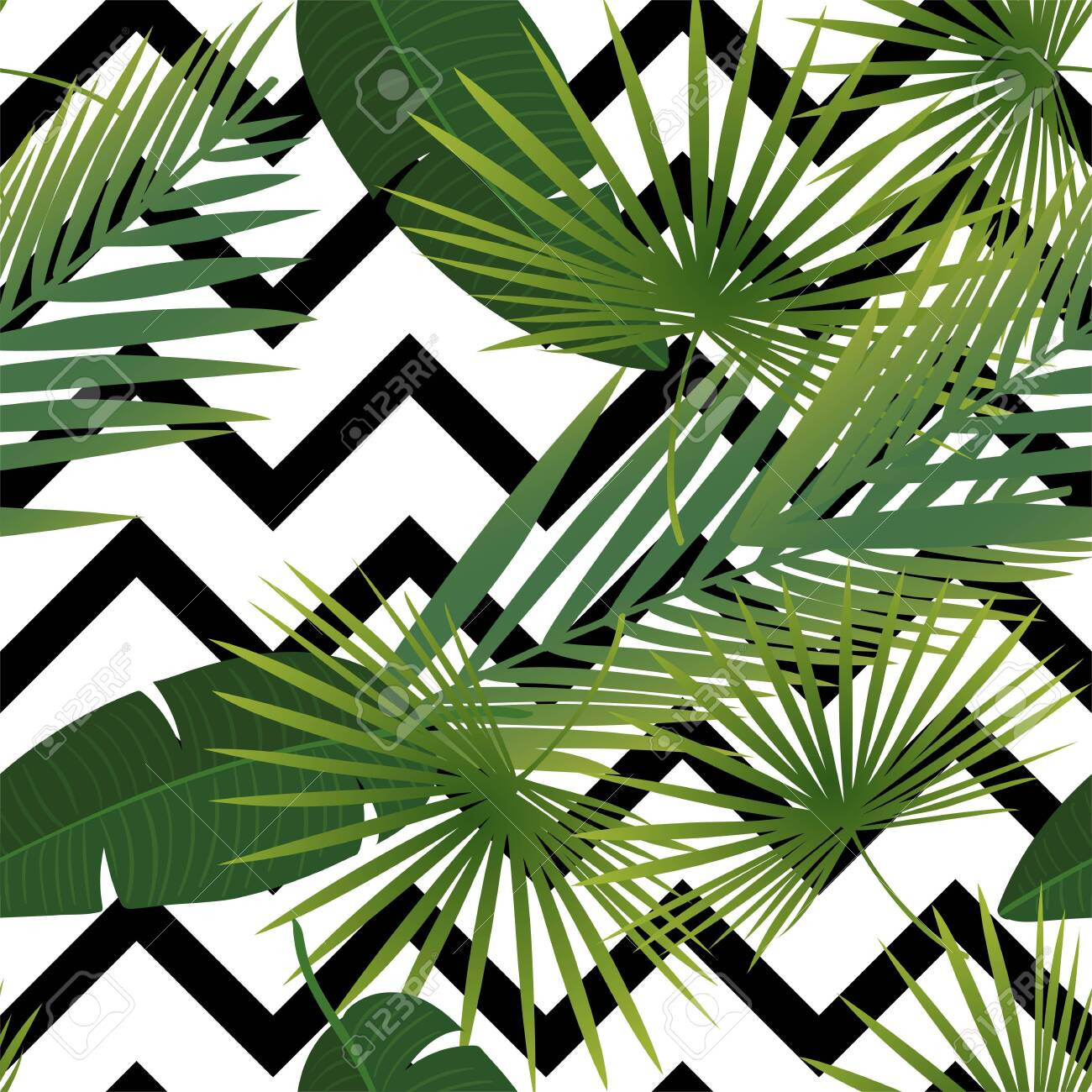 Beautiful tropical abstract color and green palm leaves seamless vector pattern on a background of geometric diagonal black and white lines. Vector illustration - 124561846