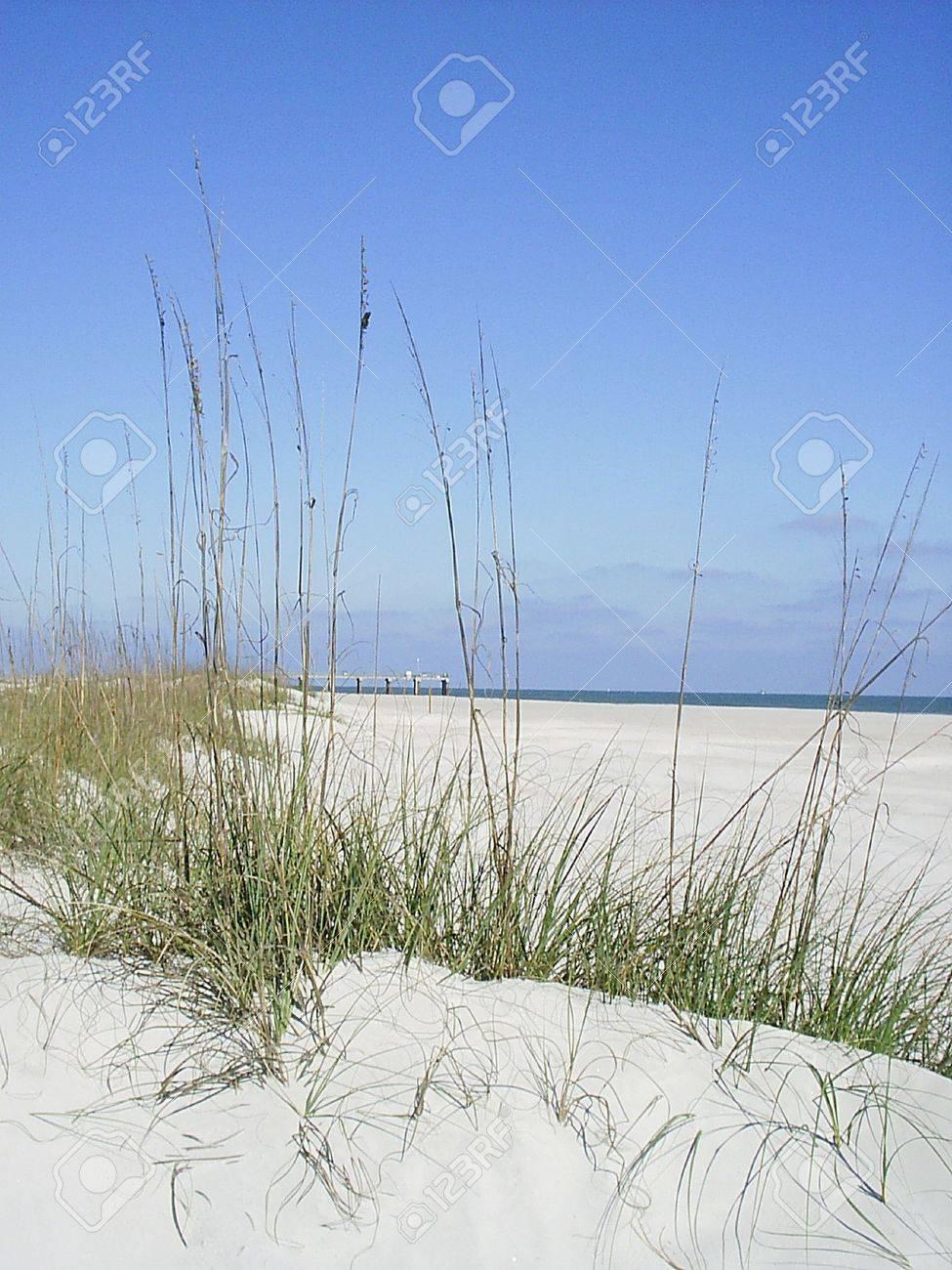 December beach Stock Photo - 1379807