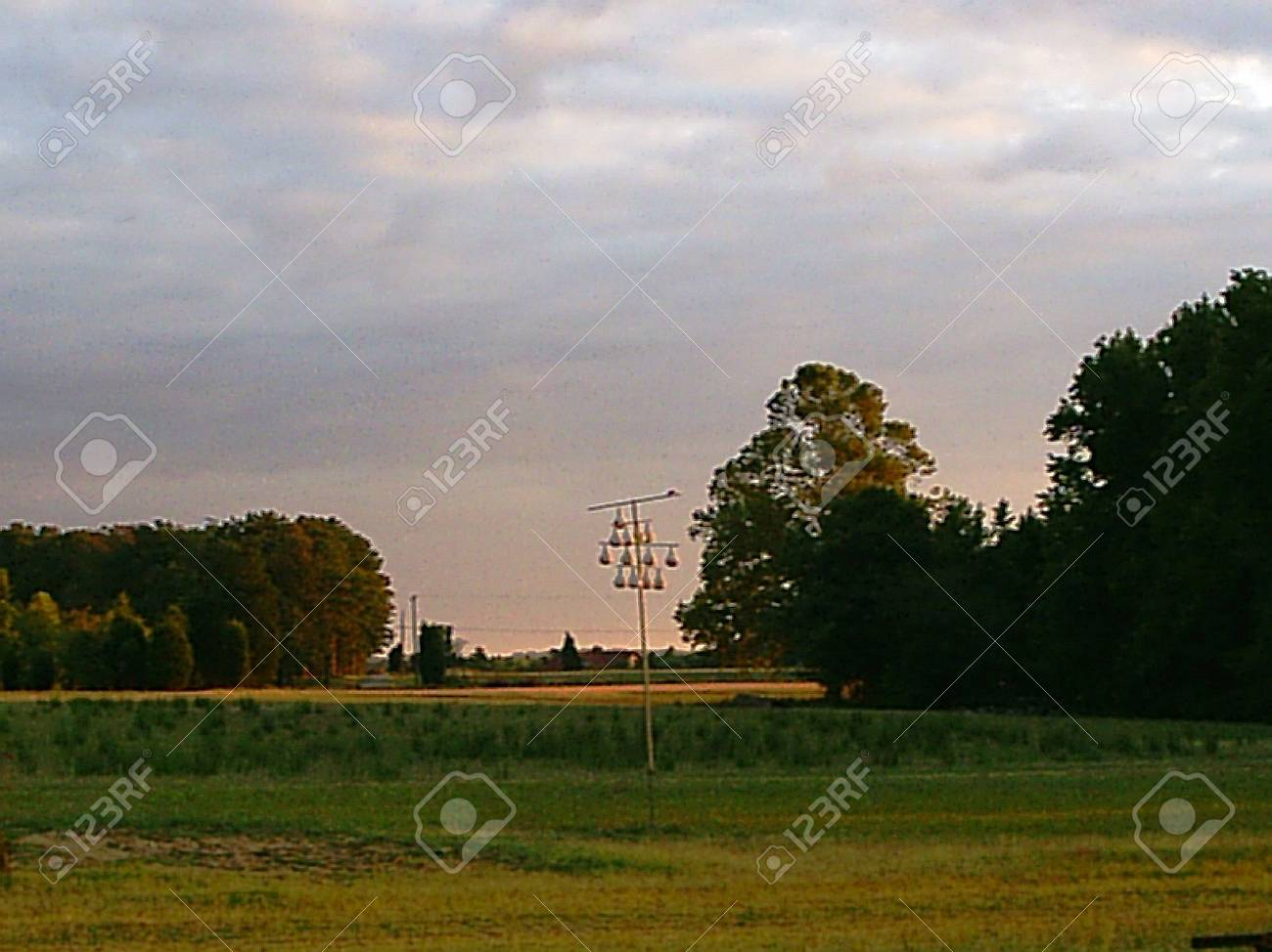 Country landscape with gourds Stock Photo - 1703684