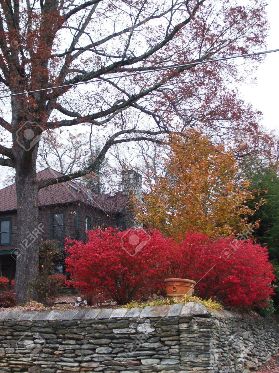 Burning bushes at the Inn at the Ragged Gardens Stock Photo - 2086326