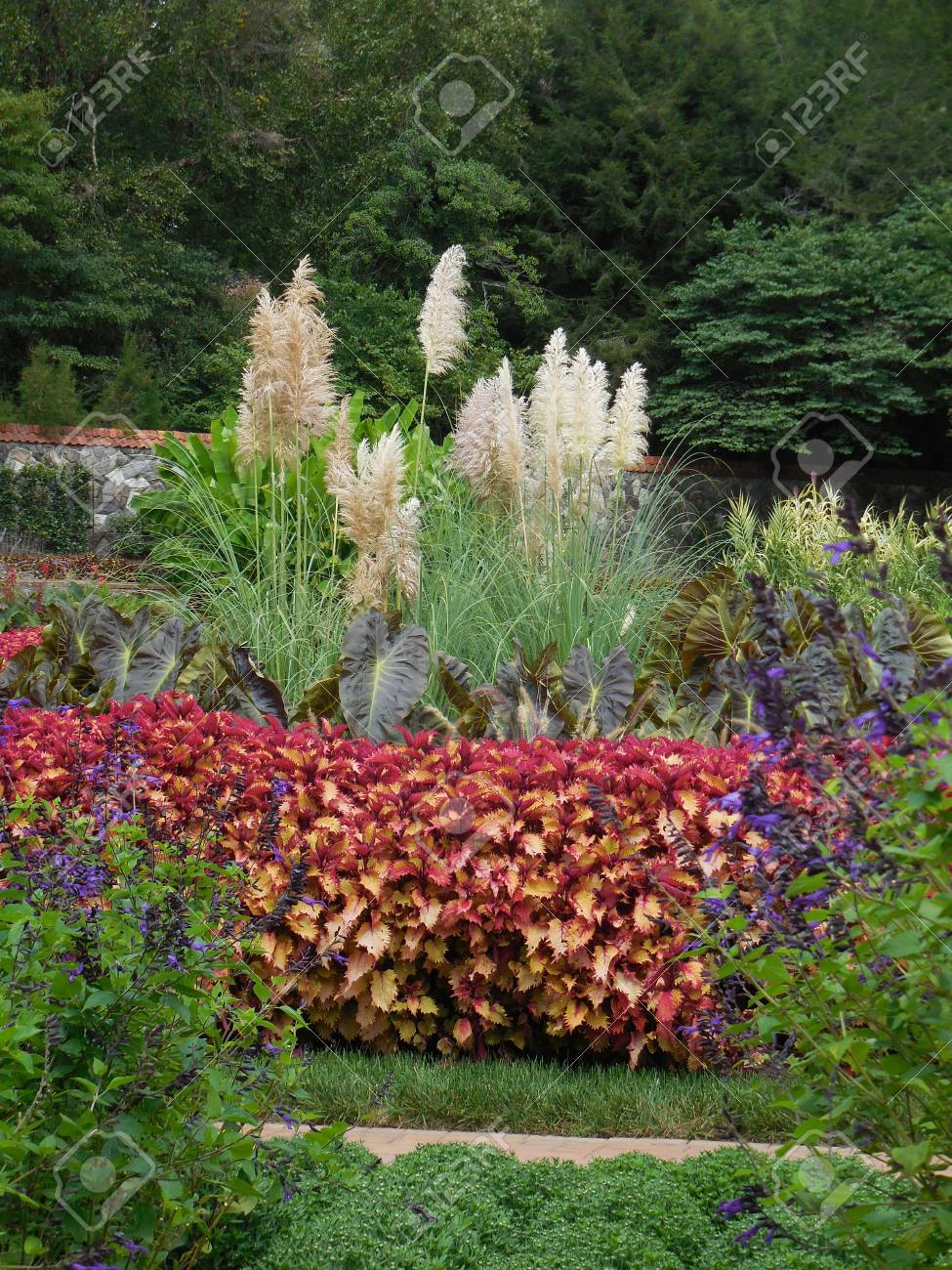 Flower garden Stock Photo - 88603405
