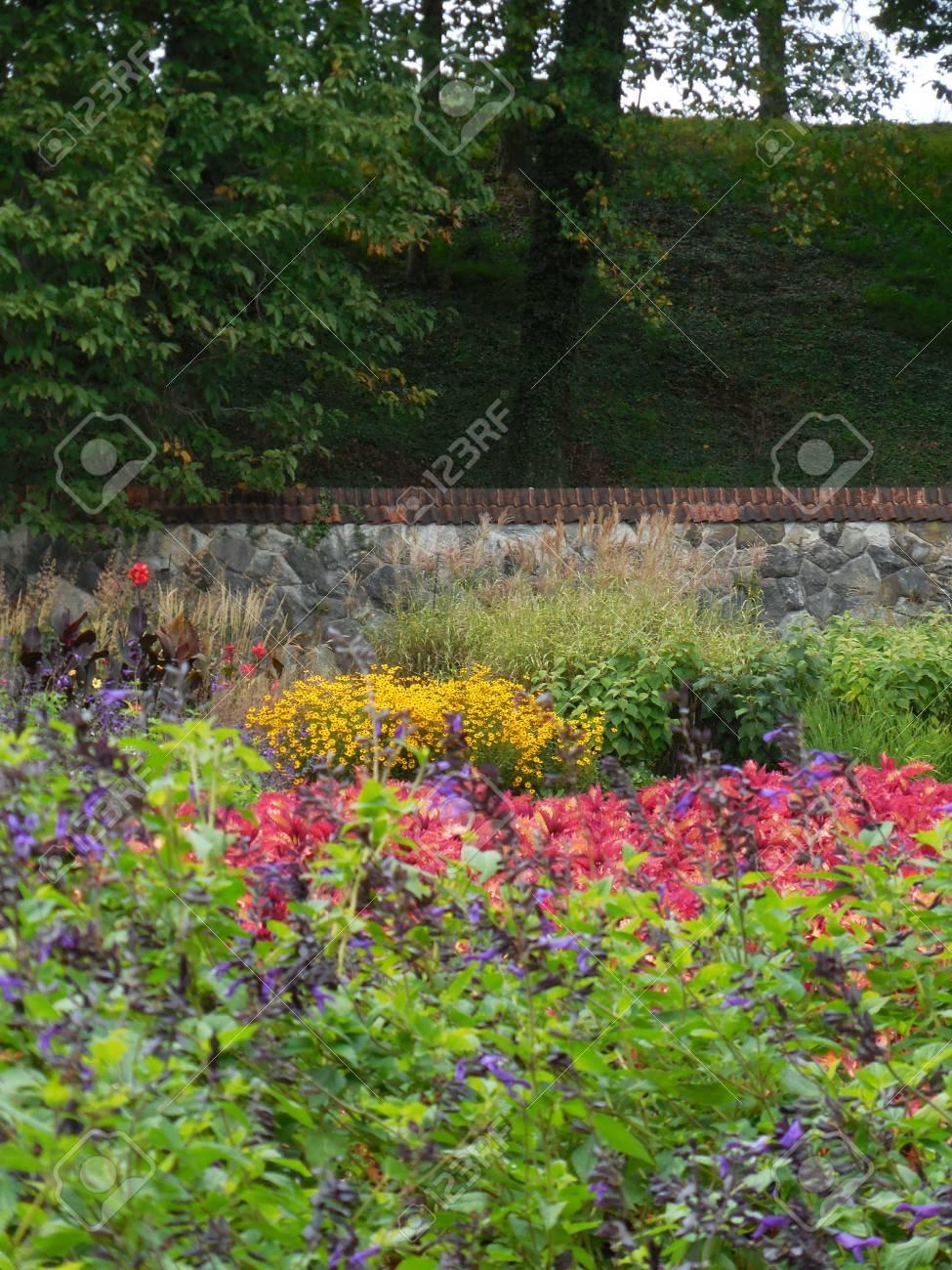 Flower garden Stock Photo - 88603406