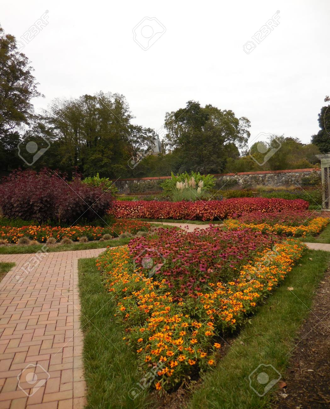 Flower garden Stock Photo - 88603407
