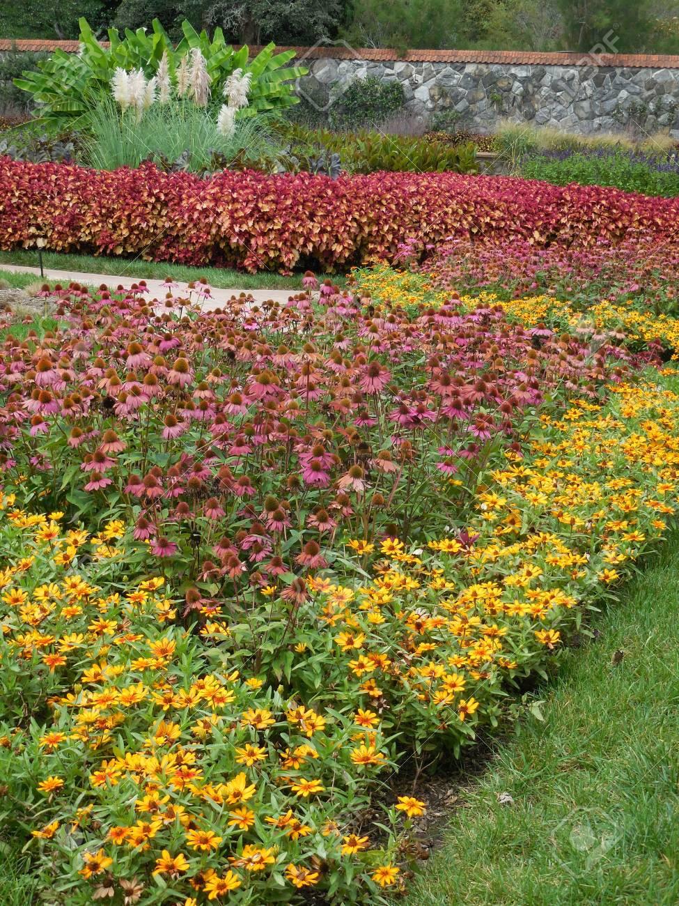 Flower garden Stock Photo - 88607229