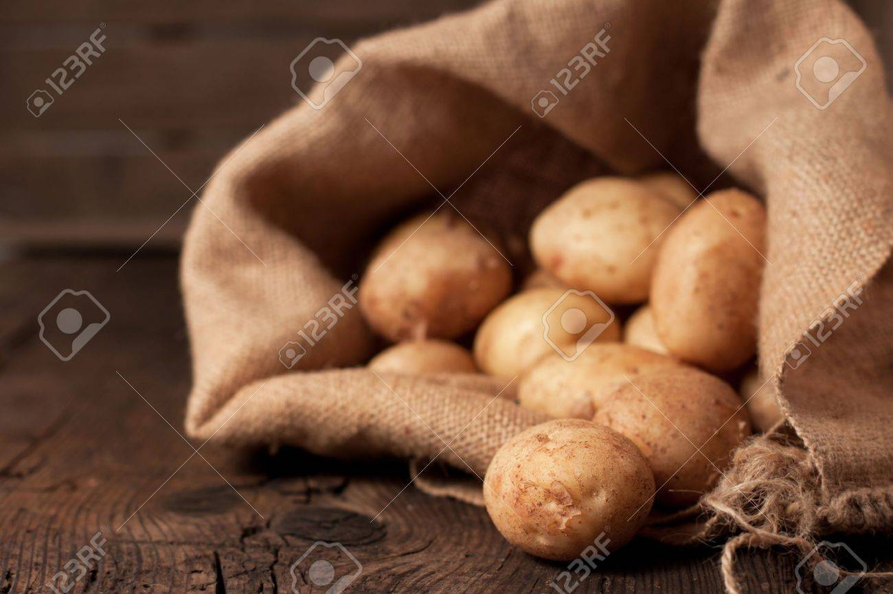 Harvest potatoes in burlap sack on rustic background - 10278367
