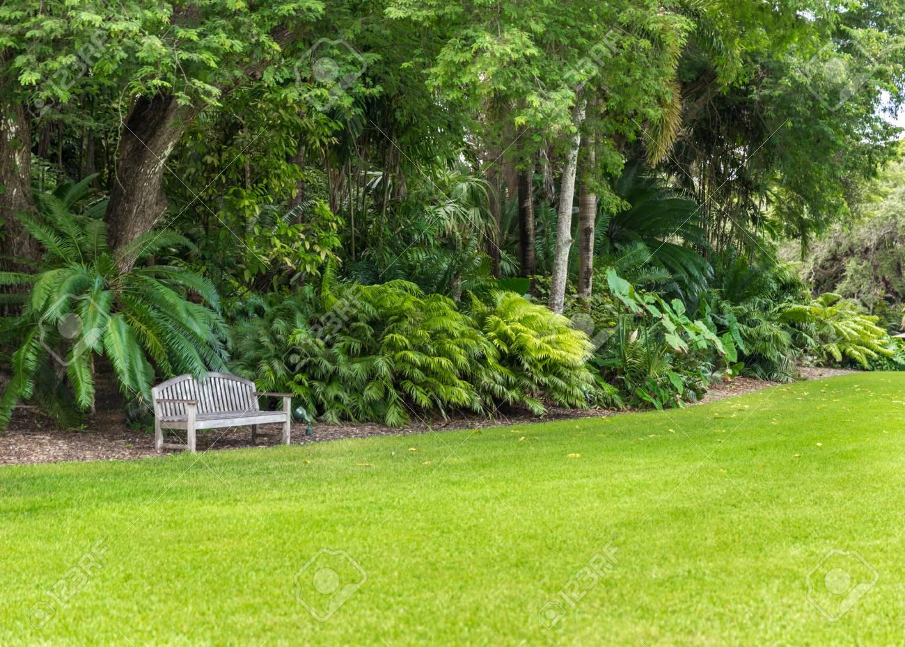 Schöner Garten Mit Schönem Rasen Und Palmen Standard Bild   33543743