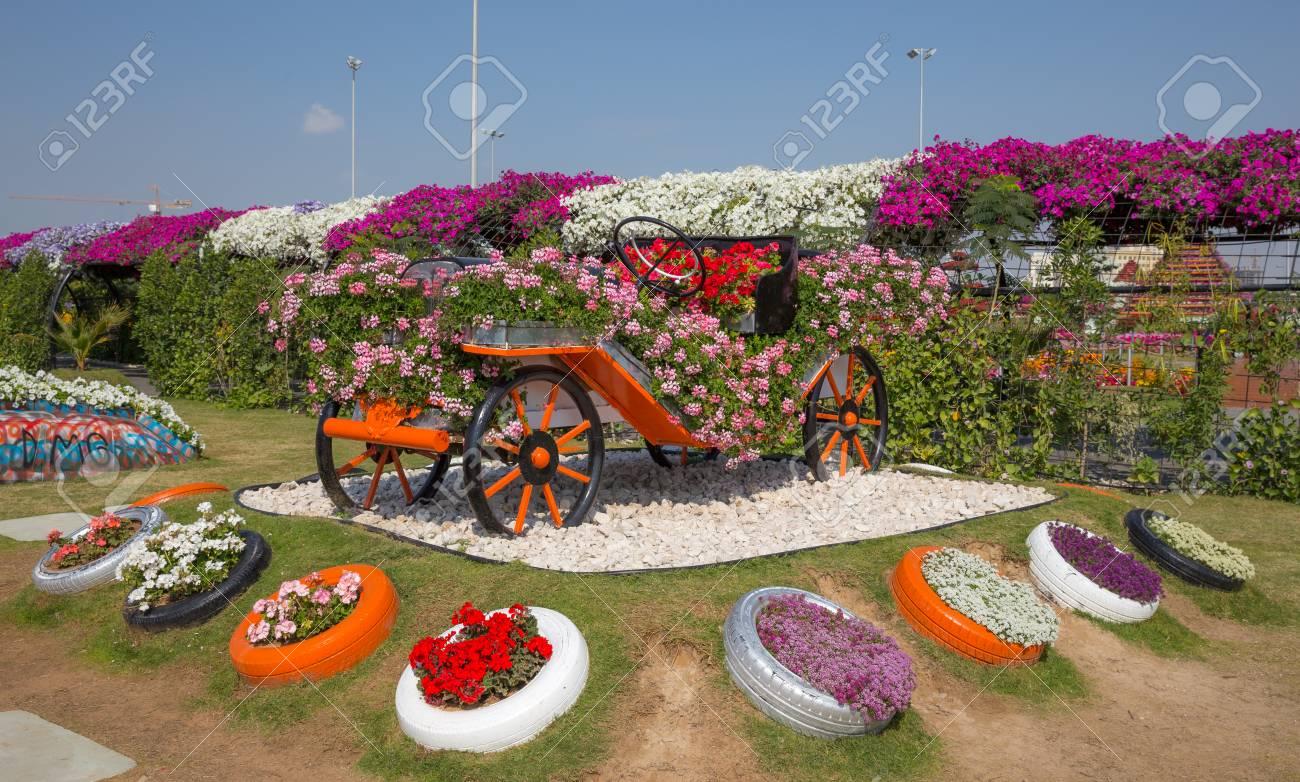 DUBAI, UAE - JANUARY 20: Miracle Garden In Dubai, On January.. Stock ...